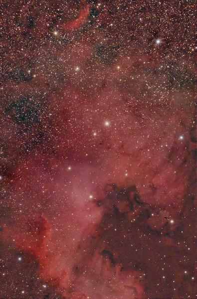 Target: NGC 7000 (North America Nebula, emission nebula in Cygnus, apparent dimension 120x100 arcmin) <br /> <br /> Distance from Earth:  1600 light-years<br /> <br /> Date/Time:  07/16/07, 0115 to 0325 EDT<br /> <br /> Mount:  Takahashi NJP Temma II<br /> <br /> Telescope:  TOA-130 with Tak reducer (FL=780mm, f/6.0) and Hutech LPS filter<br /> <br /> Camera: Starlight Xpress SXVF-M25C ccd guided by SBIG STV with Takahashi FS-60C w/ Optec 0.62x reducer (f/3.7)<br /> <br /> Focus: VSE Epsilon MicroGlide focuser with RoboFocus motor and AstroArt 4.0 autofocus plug-in<br /> <br /> Sky conditions:  transparency 3/5, seeing 3/5, wind 5mph, humidity ?%, temp (O/I) 64.9/63.0Fat beginning and 63.0/60.6F at conclusion<br /> <br /> Moon:  0.036 illuminated, mag -5.7, 1.7 days old, 1.74 days past new<br /> <br /> Images:  Captured with AstroArt 4.0 at an image scale of 2.06 arcsec/pixel; 27, 120 sec light frames; 20, 6.2 sec flat-light; 20, 6.2 sec flat-dark and 20, 120 sec dark frames; 16 light frames were used during processing<br /> <br /> Processing:  ImagesPlus 3 beta 5, MaxIm DL 4.60, Picture Window Pro 4.0 and Photoshop CS 8.0 with GradientXTerminator and Noise Ninja; image cropped (revised 08/06/07)