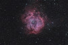 Target:  NGC 2237 (Rosette Nebula, emission nebula in Monoceros)  in LRGB<br /> <br /> Distance from Earth:  3600 light-years<br /> <br /> Image FOV: 218 x 144 arcmins<br /> <br /> Telescope: Takahashi FSQ-106ED refractor (f/5.0) <br /> <br /> Camera: SBIG STL11000M ccd<br /> <br /> Focus: Autofocus<br /> <br /> Images: Captured from GRAS-014 in Mayhill, NM at an image scale of 3.49 arcsec/pixel; 33, 300 sec subexposures; 30 minutes (R), 30 minutes (G), 30 minutes (B) and 75 minutes (L); total exposure time of 165 minutes on Dec 11, 2010<br /> <br /> Processing: MaxIm DL 5.12, Registar 1.0 and Photoshop CS3 with GradientXTerminator; image cropped (revised 01/28/11)