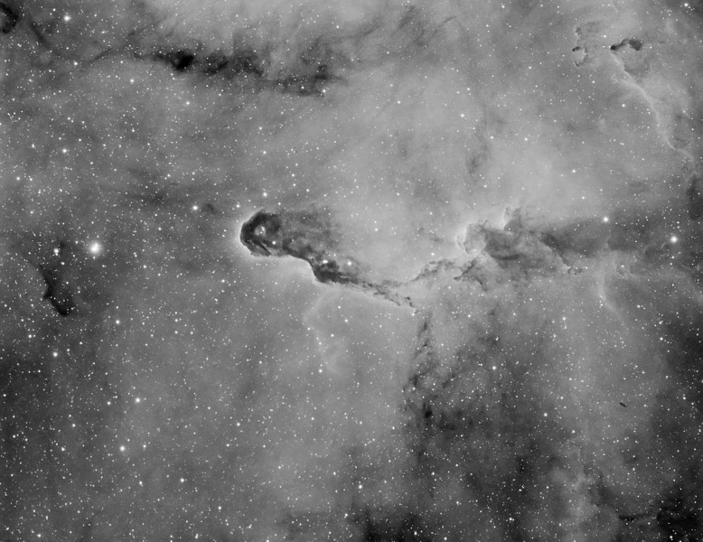 Target: VdB142 (Elephant Trunk Nebula; reflection nebula in Cepheus) 4-panel mosaic in narrowband (Ha)<br /> <br /> Distance from Earth:  3000 light-years<br /> <br /> Image FOV:  71 x 54 arcmins<br /> <br /> Mount: Takahashi NJP Temma II<br /> <br /> Telescope: Takahashi TOA-130 refractor with TOA-130 0.78x reducer (f/6.0) and Astrodon 5nm Ha filter<br /> <br /> Camera: Starlight Xpress SXVF-H9 ccd guided by SX Autoguider with Takahashi FS-60C refractor (f/5.9)<br /> <br /> Focus: Finger Lakes Instrumentation PDF focuser with FocusMax/MaxIm DL software<br /> <br /> Images: Captured with MaxIm DL 5.08 at an image scale of 1.69 arcsec/pixel; total exposure time of 480 minutes on May 29, 30, 31, 2010<br /> <br /> Processing: MaxIm DL 5.08, Registar and Photoshop CS3 with Noise Ninja; Ha images processed in MaxIm DL, aligned in Registar and copied into PS; image cropped