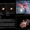 Visible expansion of the Homunculus Nebula around Eta Carinae
