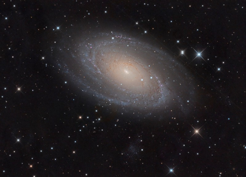 "Messier 81 (also known as NGC 3031 or Bode's Galaxy) is a spiral galaxy about 12 million light-years away, in the constellation Ursa Major. Due to its proximity to Earth, large size, and active galactic nucleus (which harbors a 70 million solar mass supermassive black hole), Messier 81 has been studied extensively by professional astronomers. That's right...the black hole in the centre of this galaxy has a mass 70 million times that of our Sun.   Just beneath it can be seen the companion dwarf galaxy Holmberg IX. Of iits 20,000 stars, only about 10% are considered to be old stars with ages of billions of years. The rest are thought to be young stars with ages of only 10 – 200 million years, and show up blue here.  RCOS 12.5"", Paramount ME2 Lum 18x10 mins R,G,B 13x5 mins each December 2017"