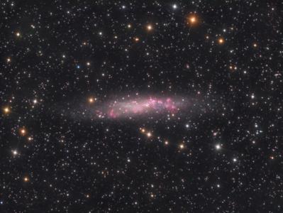 A Deep View of Dwarf Spiral Galaxy NGC 3109