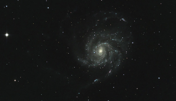 Pinwheel Galaxy M101 Cropped