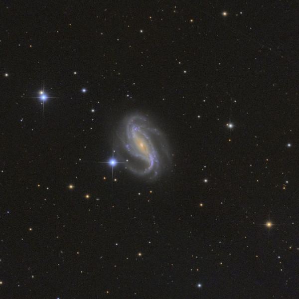 NGC 613