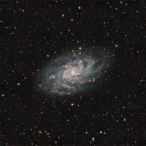 M33   TEC140 & MORAVIAN G16803  xh RGB & xh Ha  Acquisition: CCDAP5, Maxim DL  Processing: Pixinsight  2012-Remote Observatory