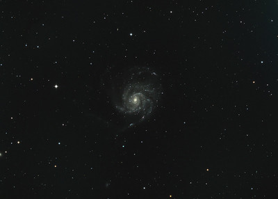 Pinwheel Galaxy M101