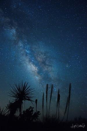 Milky Way - Nightscape Favorites