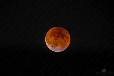 Moon Shots
