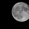 98.4% full moon