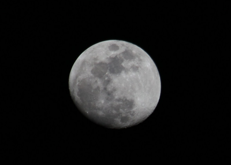 First attempt -- Canon XSi with a 75-300 f/5.6 lens cropped jpg only.  Not as clear as I want, have to try again ....
