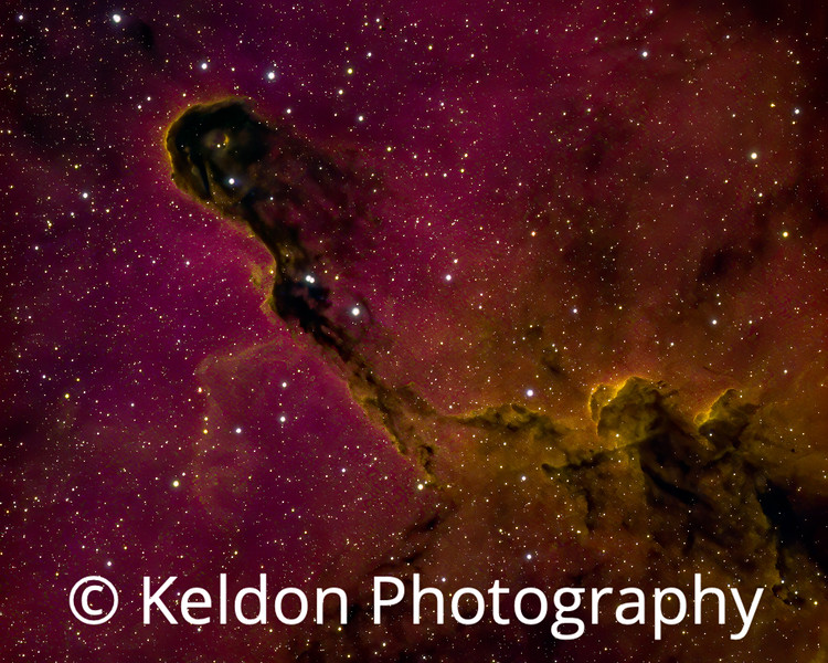 Elephant's Trunk Nebula IC 1396A