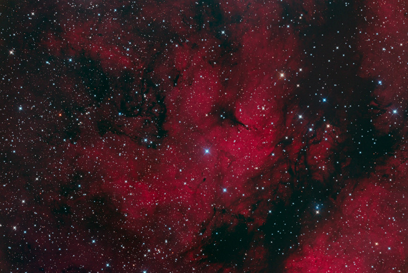 IC1318 Sadr Nebula in Cygnus