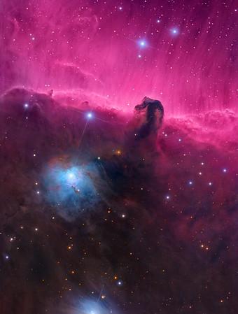 The Horsehead Nebula (Barnard 33) and NGC 2023