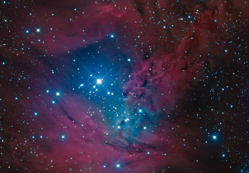 NGC 2264 Fox fur nebula: Crop from wider frame
