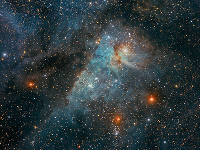 Hidden Treasures of the Carina Nebula