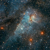 Hidden Treasures of the Carina Nebula