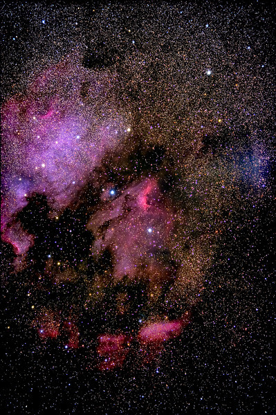The Pelican and North American Nebula<br /> TMSP2011