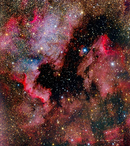 The North America and Pelican Nebula