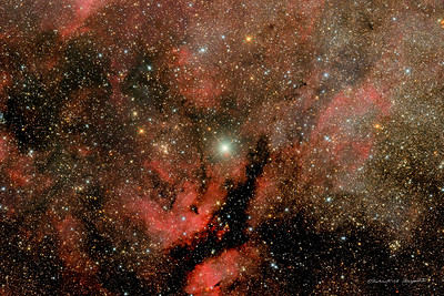 The star Sadr and the Gamma Cygni nebula