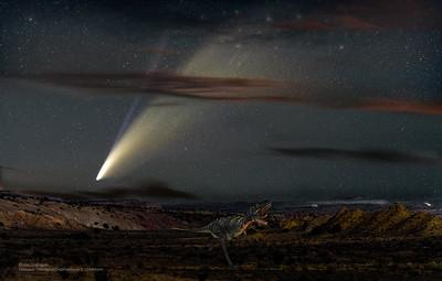 Cretaceous Extinction Event?