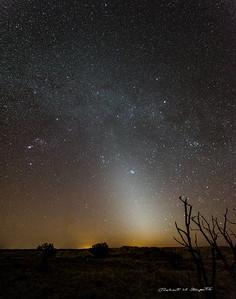 Zodiacal Light west of Albuquerque, New Mexico