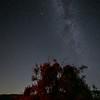 Perseid Meteor streaks by the Milky Way., Frazier Park, CA. 08-11-12-2020