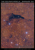 Large Format Poster: The Dolphin Nebula - Barnard 252