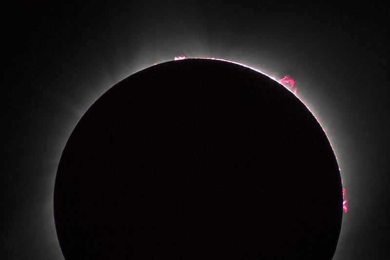 Solar prominences, baily's beads, and the coronoa - all in one shot!