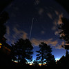 ISS Flyover, starting from the middle going down.  I wasn't ready in time to get it all the way through the frame.  42 second exposure, 18mm+0.42x adapter at 5am.