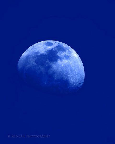 Blue Moon.. A daytime shot.