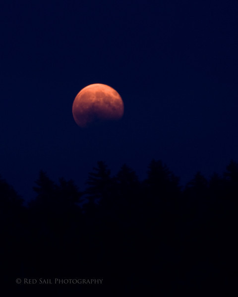 Harvest Moon in Maine...