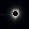 This is a composite shot ( inner, outer and everything in between)<br /> It is impossible to capture the entire corona in one single shot; the dynamic range is too wide for any camera ( digital or film ) to record. Note: you can see the prominence.
