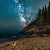 Marine Life Milkyway
