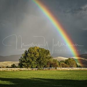 Widest Rainbow Ever