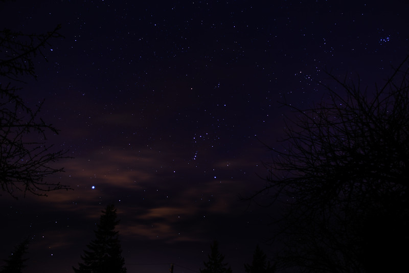 Sirius, Orion, and Pleiades