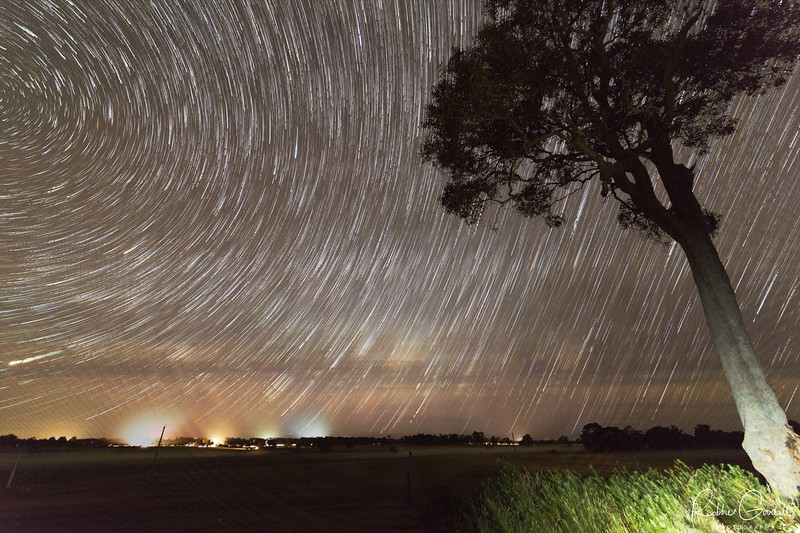Star Trails over Margaret River - Western Australia