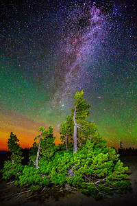 The Aurora Borealis, Andromeda Galaxy and Milky Way over Whitebark Pines, Crater Lake National Park