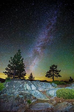 """Galaxy Through the Pines,"" Winter Milky Way over Jeffery Pine trees in the High Sierra Nevada, Yosemite National Park, California"