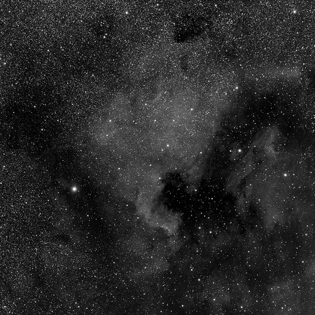 North America Nebula (NGC7000)