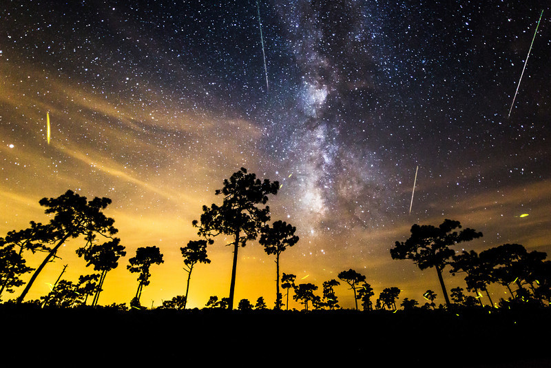 Milky Way and Fireflies in Florida