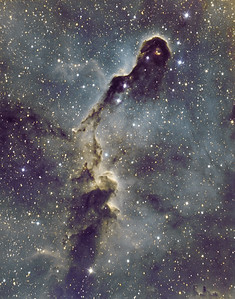 IC1396, The Elephant's Trunk