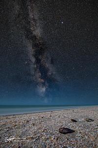 Sanibel Island Stars