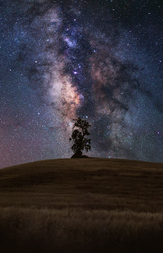 Milky Way in Central California