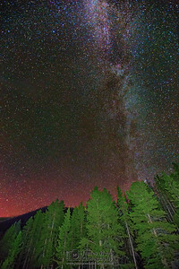 The Aurora Borealis and Milky Way over Black Butte and Lodgepole Pines, Yellowstone National Park