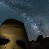 Skull and Stars
