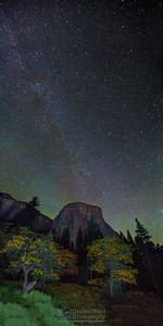 """Skyward Paradise,"" Winter Milky Way over Dogwood Trees and El Capitan, Yosemite Valley, Yosemite National Park"