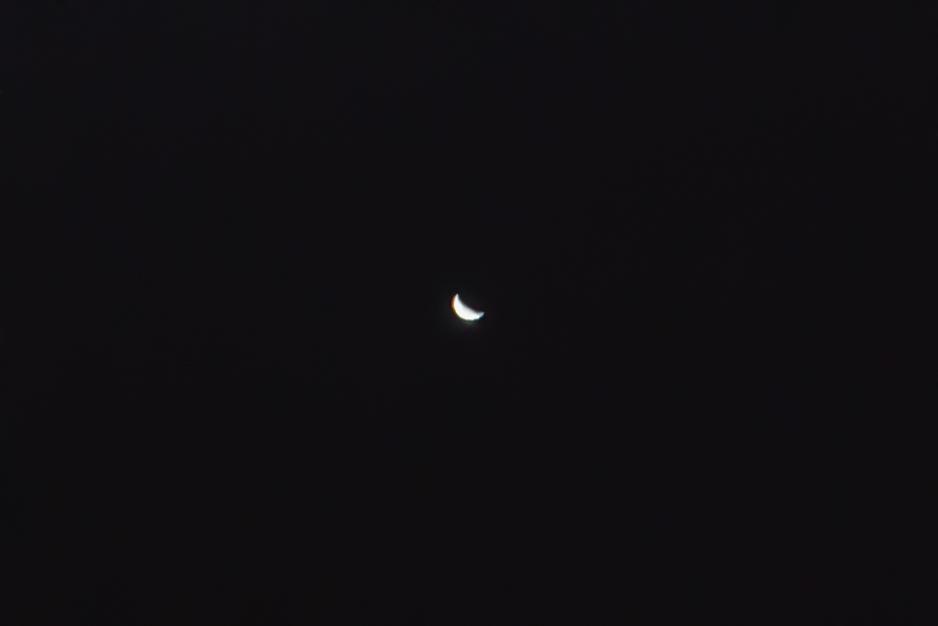 Venus- Single Frame crop
