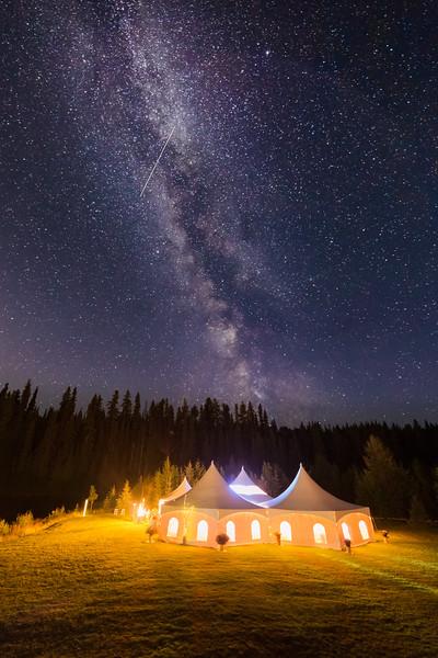 Milky Wedding