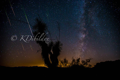 2016 Perseid Meteor Shower (composite)