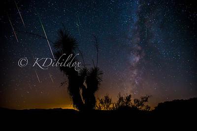 2016 Perseid Meteor Shower (composite)